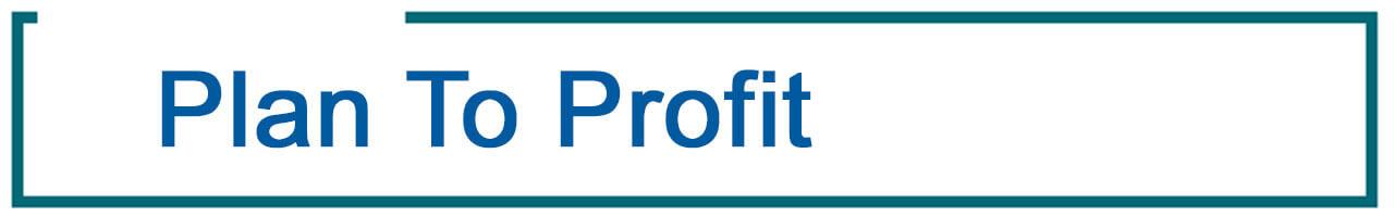 Plan to Profit